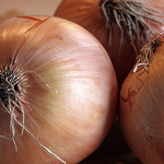 Onion, by Dey via Flickr